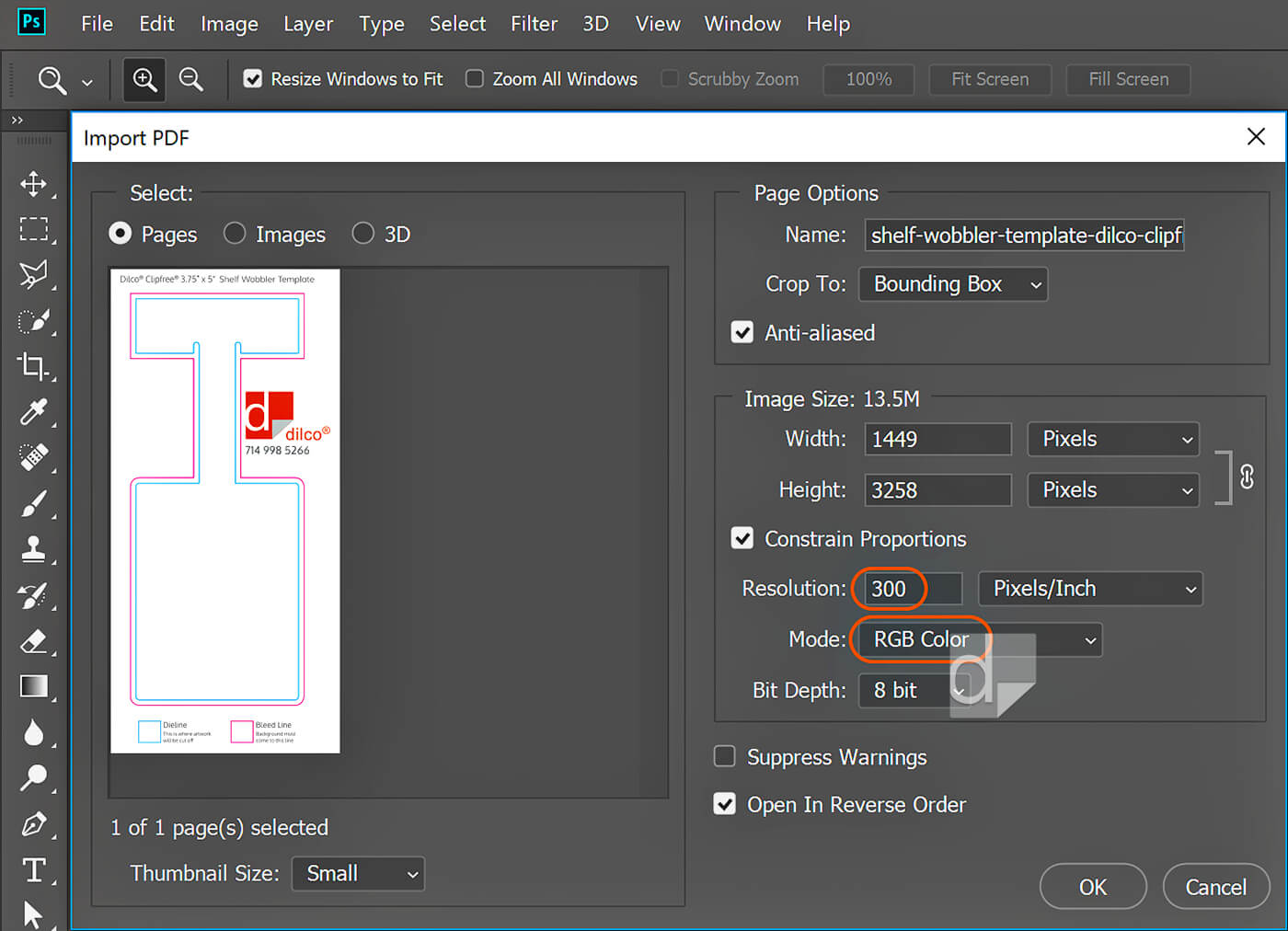 Screenshot of opening Dilco template in Photoshop at 300 ppi in RGB color mode.