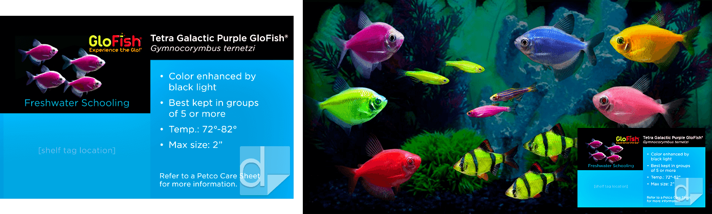 Shelf Tag Cards Full-Color Printed by Dilco for Petco GloFish